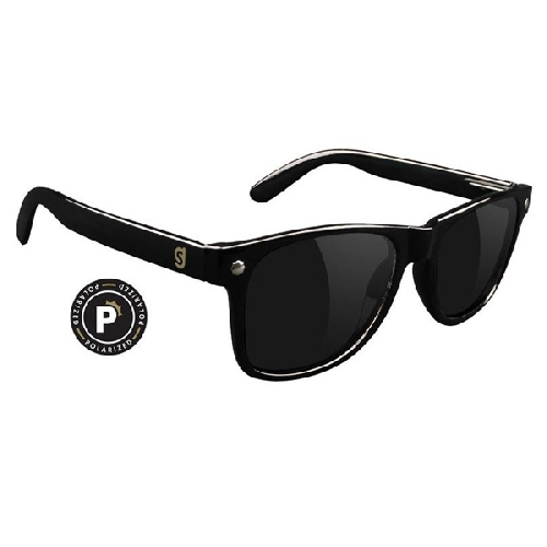 Glassy LEONARD POLARIZED black
